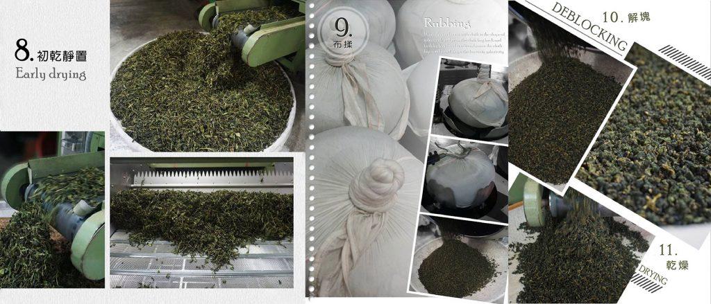 茶葉製作步驟 8-11